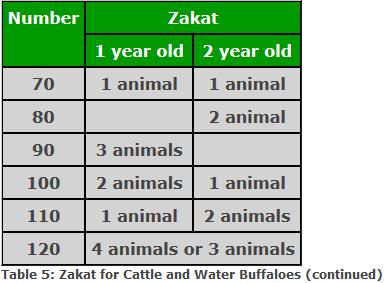 Livestock, Animals, Cows, Sheep, Camels - Hidaya Foundation